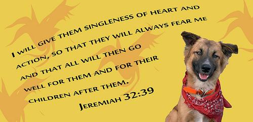 Lord Renew a Steadfast Spirit