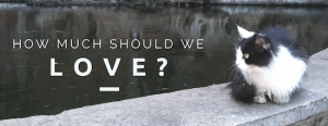 How Much Should We Love?