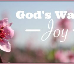 God's Way is Joy
