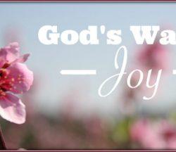 God's Way is Joy