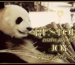 Restore Joy Salvation