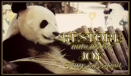 Restore Joy Salvation