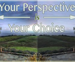 Your Perspective Your Choice