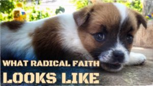 What Radical Faith Looks Like