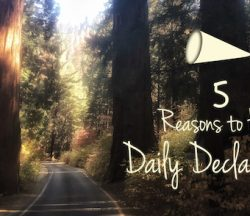 5-reasons-declarations