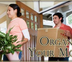 Organize Your Move