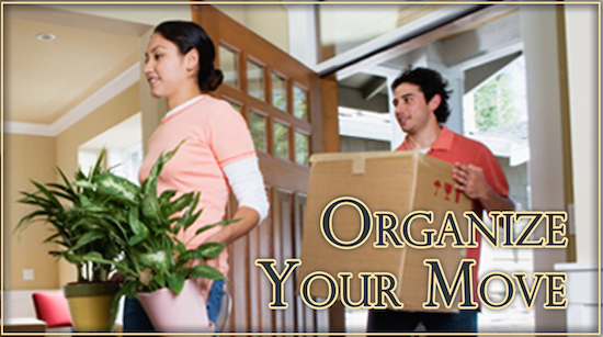 Organize Your Move