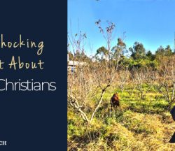 Shocking Fact Non Christians-bg