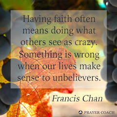 Doing Crazy - Francis Chan