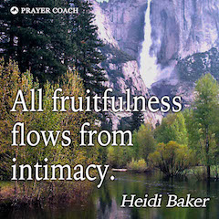 Fruitfulness Flows - Heidi Baker