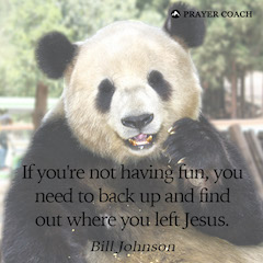 Have Fun - Bill Johnson