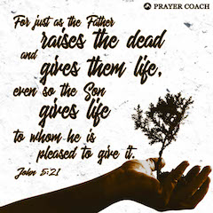 John 5:21 - Son gives life