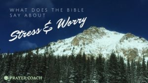 bible say about stress and worry