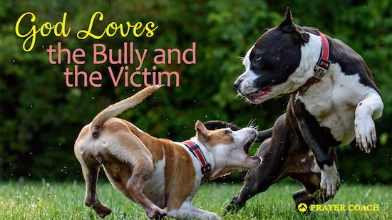 God loves the bully and the victim