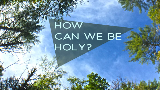 How Can We Be Holy?