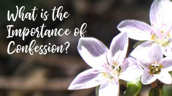 What is the Importance of Confession?