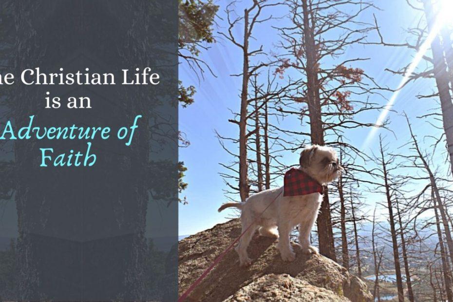 adventure of faith