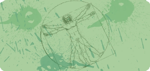 Leonardi da vinci vitruvian man